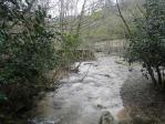 冬の小川2